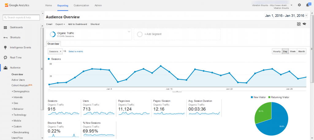 VM Audience Overview Organic