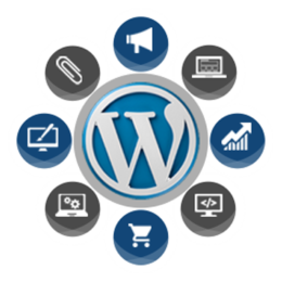 WordPress Web Development packages